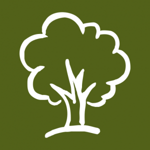Image of a white tree against a green background